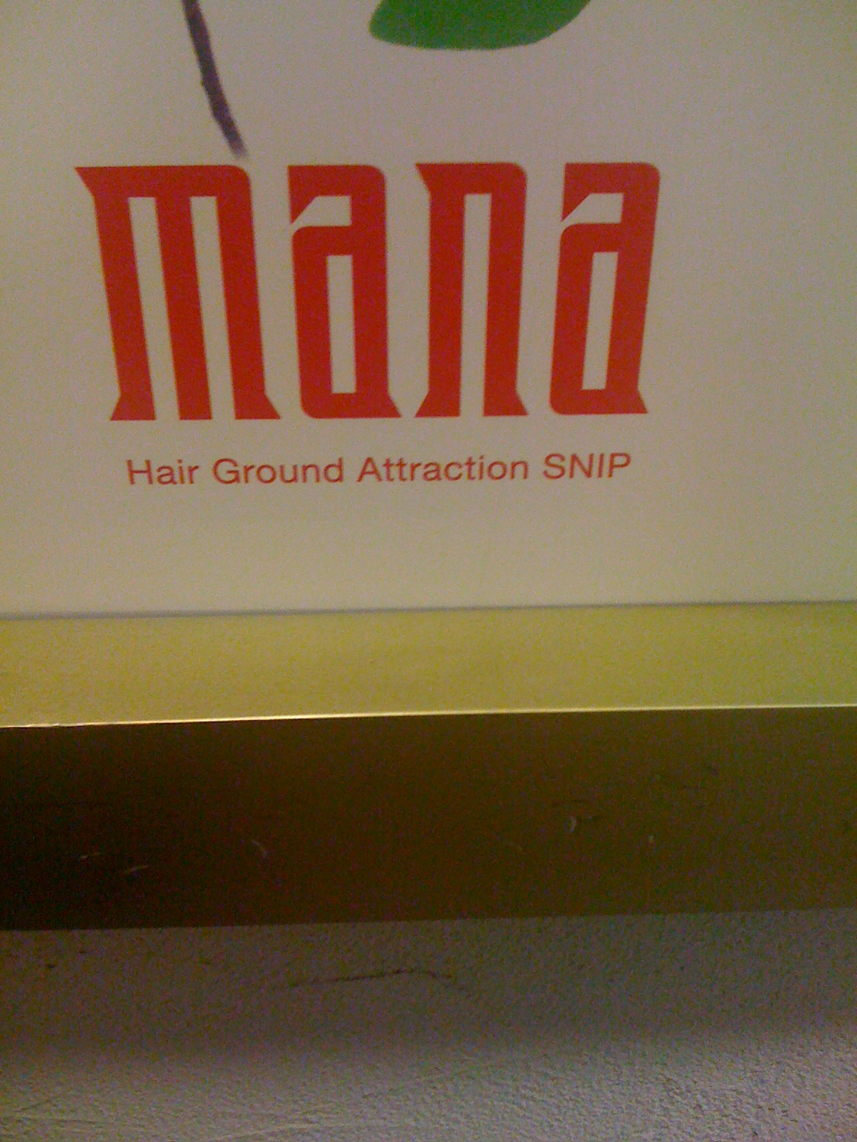 Japlish Hair Ground Attraction